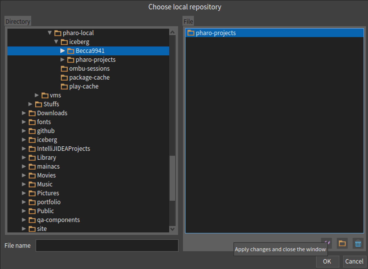 select local repository to clone into your pharo project